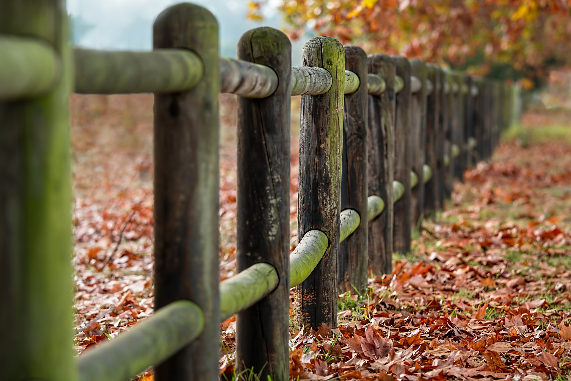 Fence posts always the same
