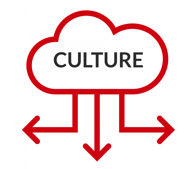 Can culture be digitised?