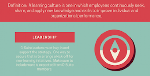 Learning culture definition