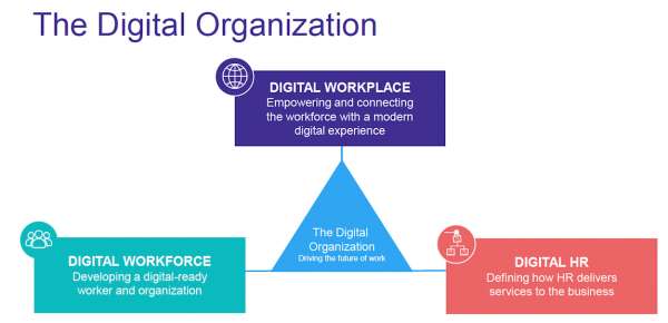 The digital organisation
