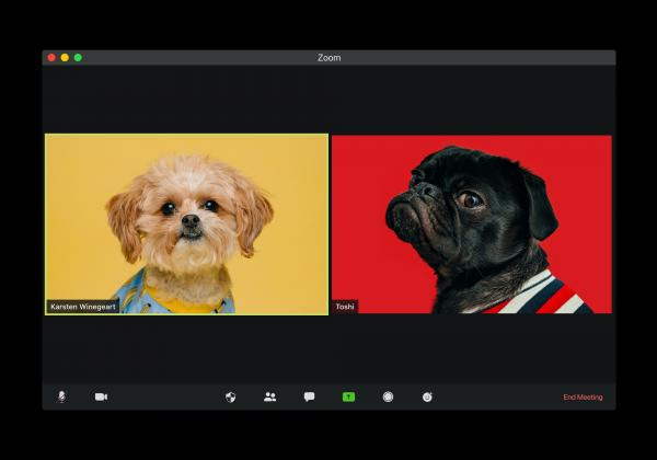 Video conferencing Photo by visuals on Unsplash